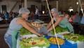 Festival da Gastronomia tem início no domingo